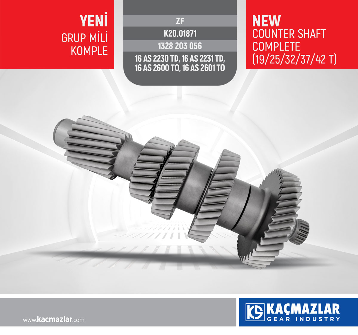 GRUP MİLİ KOMPLE - COUNTER SHAFT COMPLETE (19/25/32/37/42 T) / ZF
